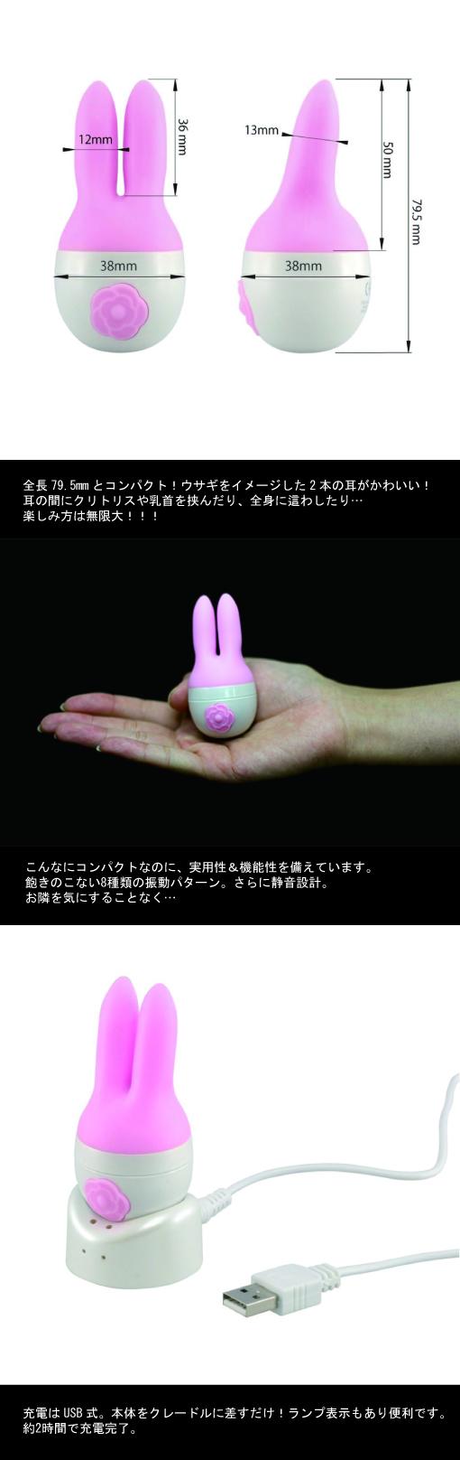 情報ページ@Kawaii Rabbit Kiss修正